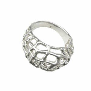 Ring als Netz